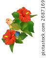多情鸚鵡 鳳頭鸚鵡 鸚鵡 2687169