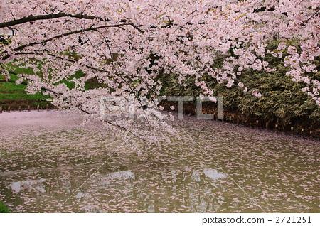 히로사키 성 공원의 해자 2721251