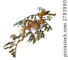 나뭇잎 해룡 2783990