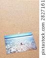 夏天的回憶 2827161