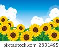 Sunflower field 2831495