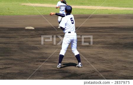 베이스볼 2837975