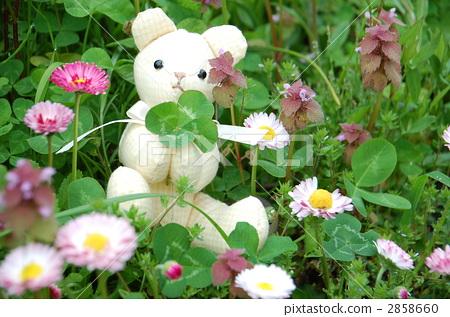 Stuffed doll having four leaves in a daisy field ~ sideways 2858660