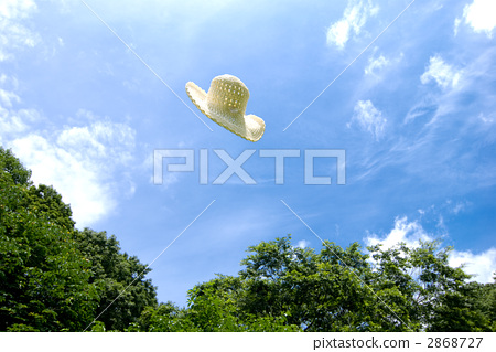 Hat flying to the sky 2868727