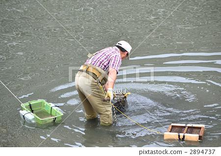 Fishing of the Sakai River that flows through Urayasu City (Urayasu City, Chiba Prefecture) 2894737