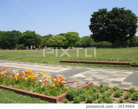 Shonai's Green Park 2914969