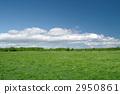 Prairie 2950861