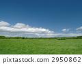 Prairie 2950862