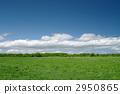 Prairie 2950865