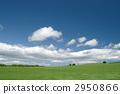 Prairie 2950866