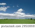 Prairie 2950868