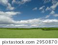 Prairie 2950870