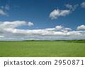 Prairie 2950871