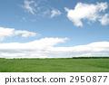 Prairie 2950877