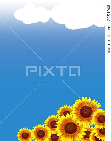 해바라기, 꽃, 플라워 2954988