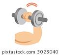 鍛煉肌肉 肌肉練習 健身 3028040