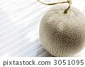 Hokkaido melon 3051095