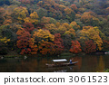 Autumn leaves of Arashiyama 3061523