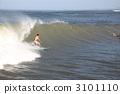 서핑 3101110
