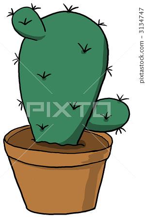 Fansuba cactus 3134747