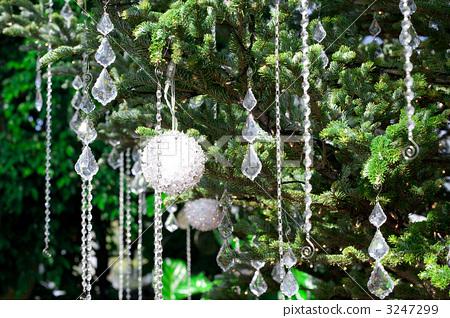 Christmas tree 3247299