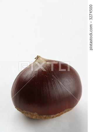 Chestnut 3274500