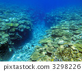 苔表鹿角珊瑚 珊瑚 珊瑚礁 3298226