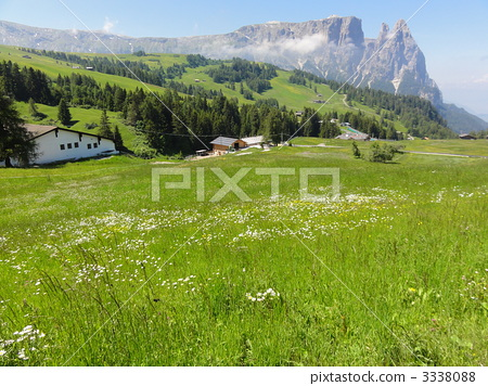 Alps 3338088