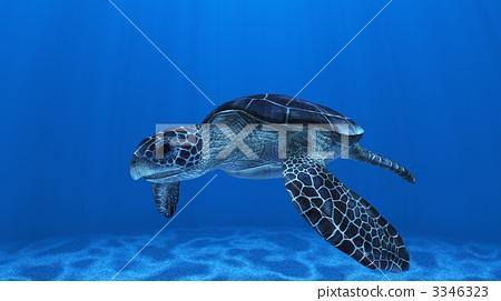 turtle, in the sea, computer graphic 3346323
