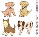 หมาสี่ตัว 3400087