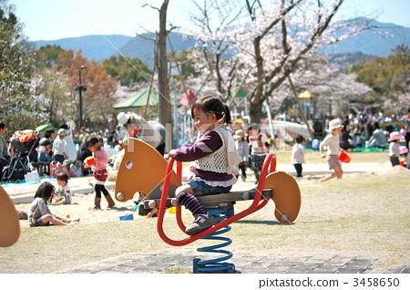 孩子們在櫻花盛開的季節裡玩 3458650