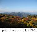 栗駒山 枫树 枫叶 3495979
