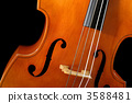 Double bass 3588481