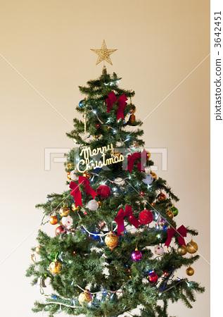 圣诞树 3642451