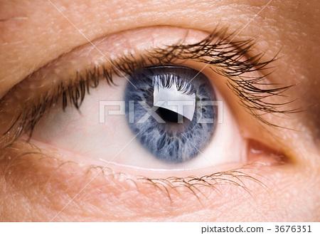 vision 3676351