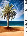 sky, sea, sand 3780444
