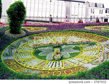 爱丁堡的花钟 3787632
