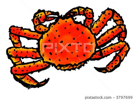 King crab 3797699