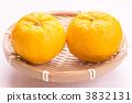 柚子 3832131
