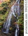 Autumn's dragon twin flowerfall 3842022