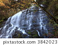 Autumn's dragon twin flowerfall 3842023