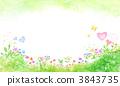 flower, garden, field 3843735