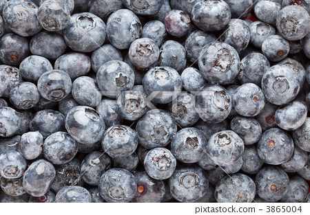 Bunch of Blueberries 3865004
