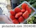 草莓包 3904048