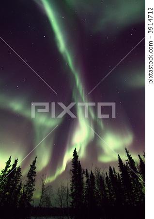 Aurora 3914712