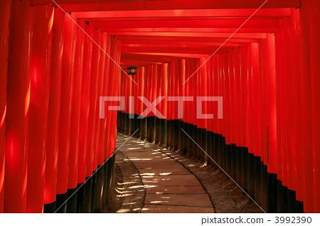 Fushimi Inari Shrine 3992390