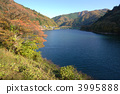 Okutama湖秋葉 3995888
