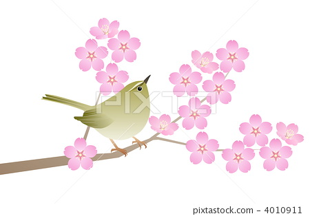 Cherry blossom viewing (small) 4010911