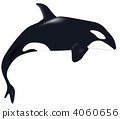 범고래의 일러스트 4060656