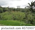 อินโดนีเซีย,บาหลี,ทวีปเอเชีย 4070907